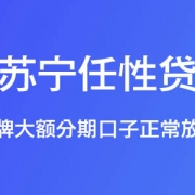 【苏宁任性贷】老牌大额分期口子正常放款,最高额度30万元!